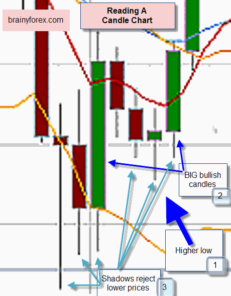 How To Read Candle Chart | Candlestick Trading