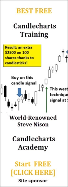 Start FREE Candlestick training with world-renowned expert Steve Nison CandleCharts Online Academy